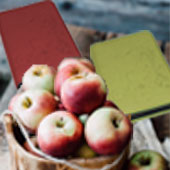 Gotteslobhülle Bio Apfel Farbauswahl