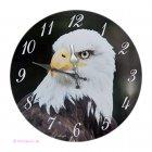 Wanduhr Uhr Adler Weißkopfseeadler